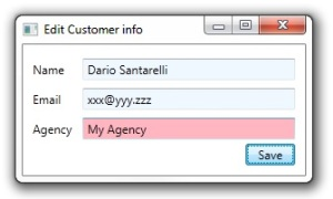 GovernmentCustomer edit Window